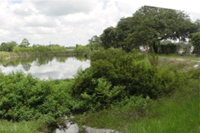 Basic stormwater pond design for Stormwater pond design